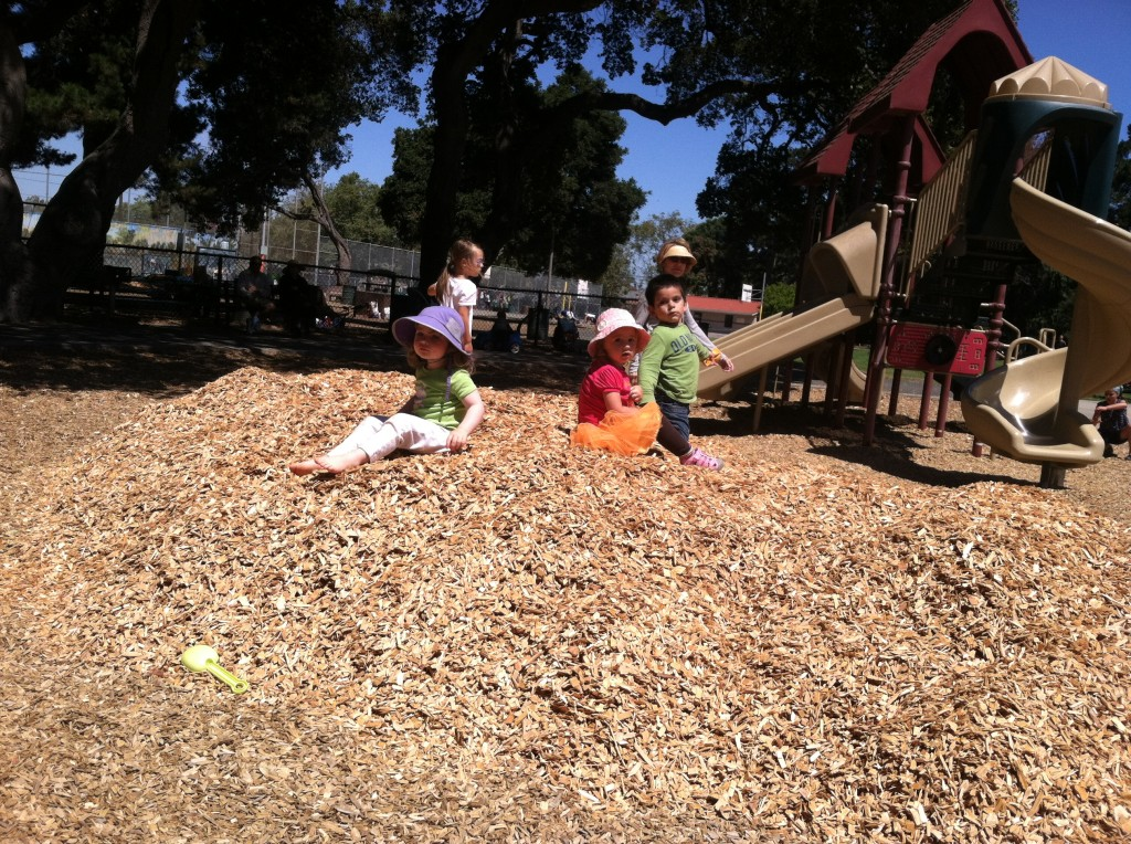 Z and Skye testing the new mulch at the playground... pensively.